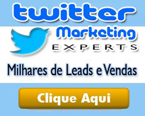 TWITTER MARKETING EXPERTS